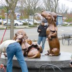 trf_bassethound-02